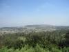Arbor_view_s
