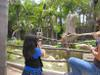 Zoo_iphon