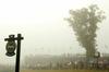 Th_fog_10th