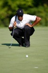Th_tiger_9thgreen_lining