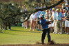 Sat_tiger_17th_leftpinetree_finish