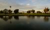 Westchester_pond