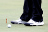 Bridgestone_wed_tiger_shoes