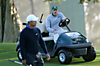 Tuesday_tiger_caseymartin_cart