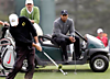 Wednesday_caseymartin_tiger_cart