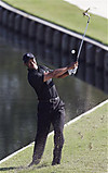 Players_fri_tiger_11thhole