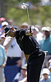 Players_fri_tiger_eagle2ndhole