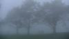 Farmersopen_sat_fog