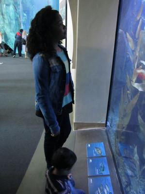 Grandkids_aquarioum2