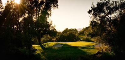 Golfsunflare