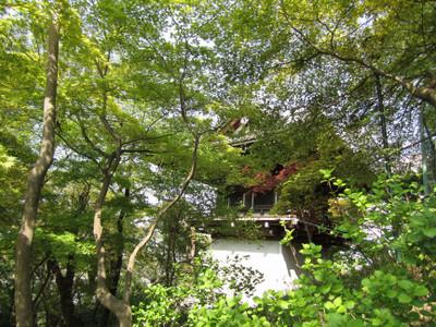Takahatafudo_9_shoro