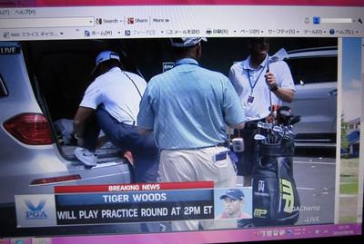 Tiger_practice_parkinglot_1s