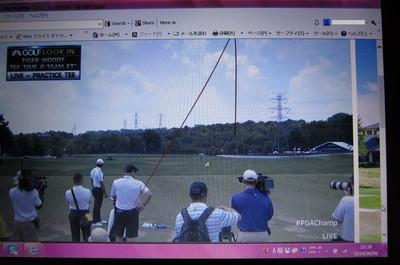 Tiger_practice_range_3s