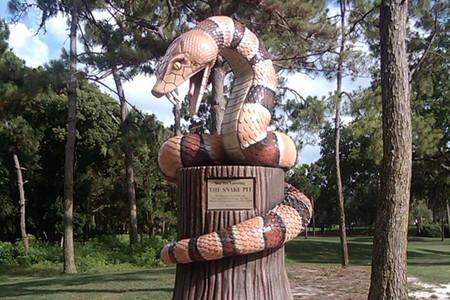 Valspar_snakepit