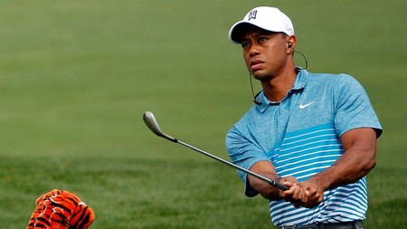 Monday_tiger_chipping