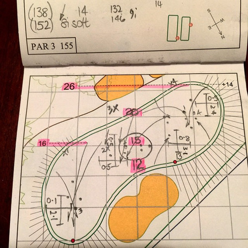 Tuesday_12thgreen_yardbook_poult_in