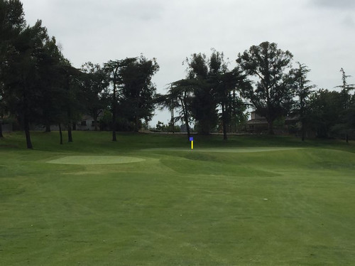 14thhole_backleft_flag