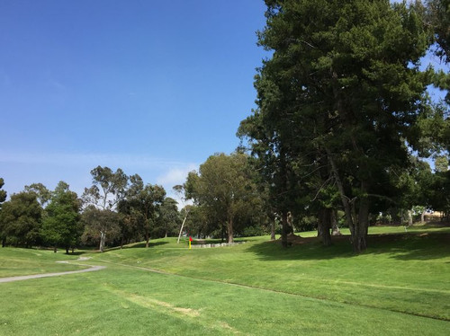 16thgreen_frontpin