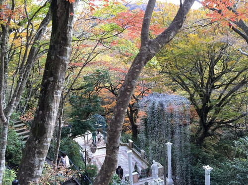 1_trees3_museum